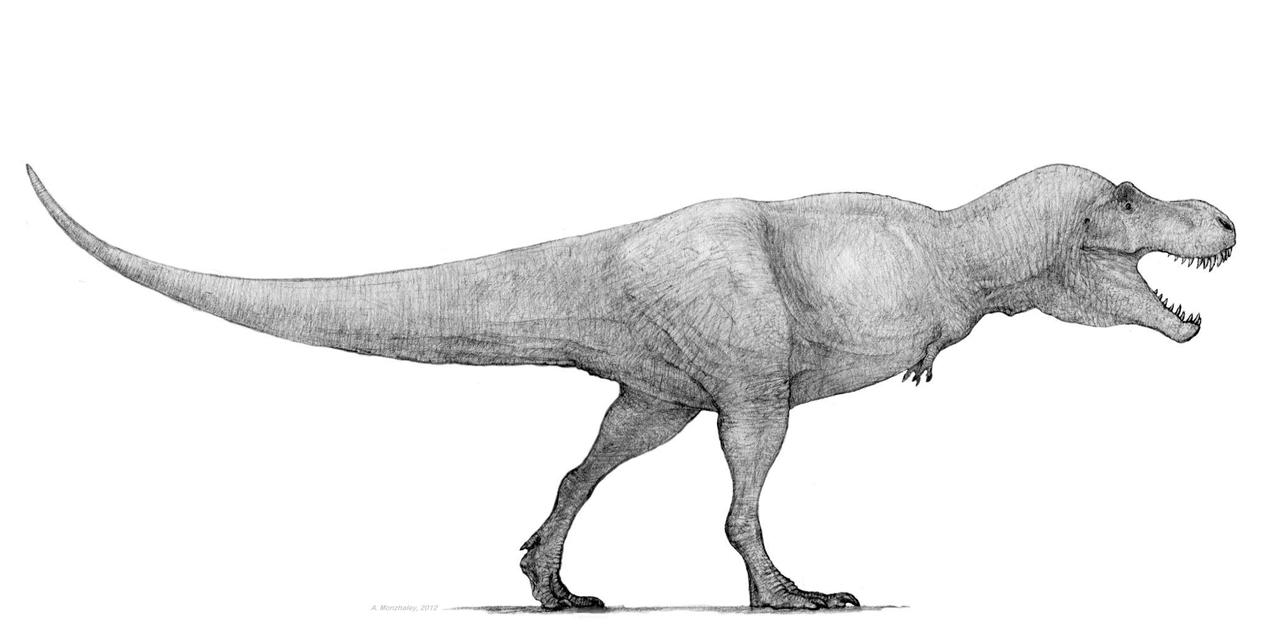 t rex by monopteryx on deviantart