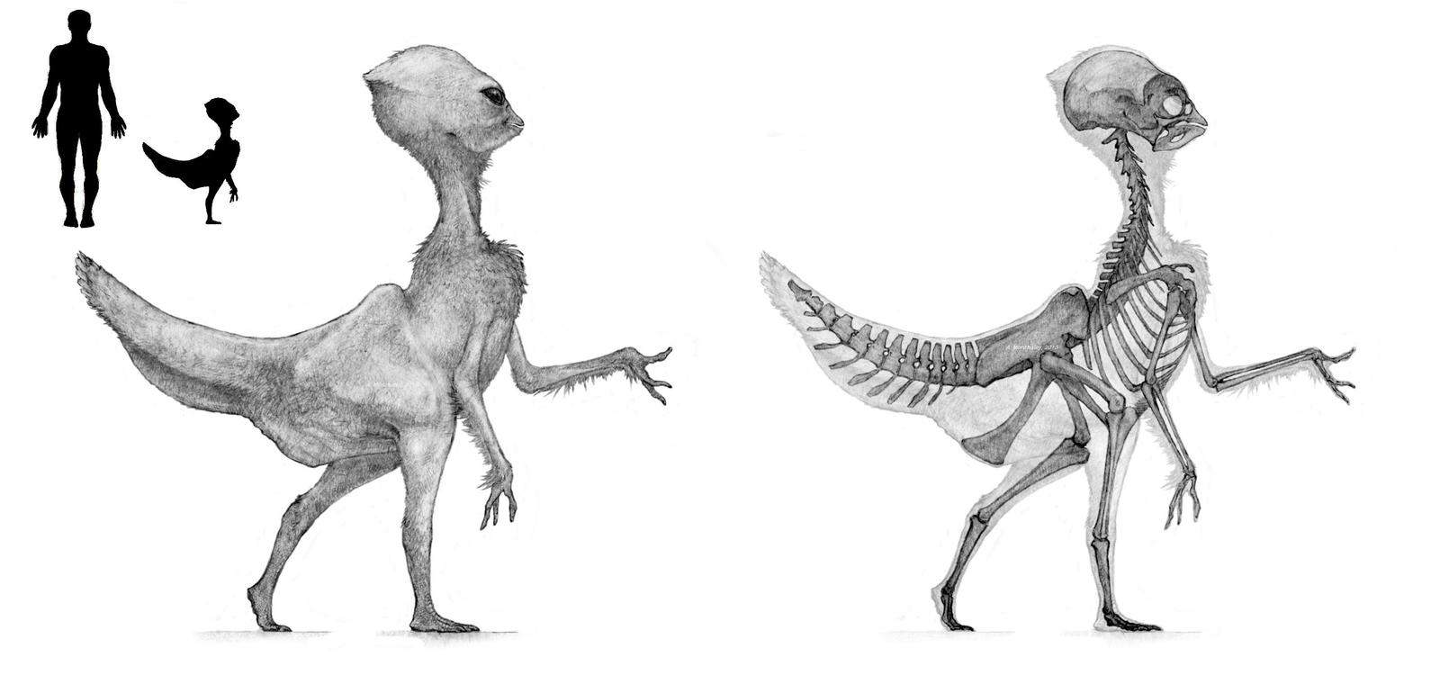 Dinosauroid v.3 by Monopteryx