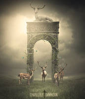 The gate of deers by CharllieeArts