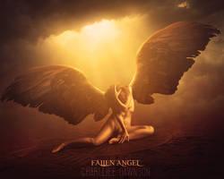 Fallen angel by CharllieeArts