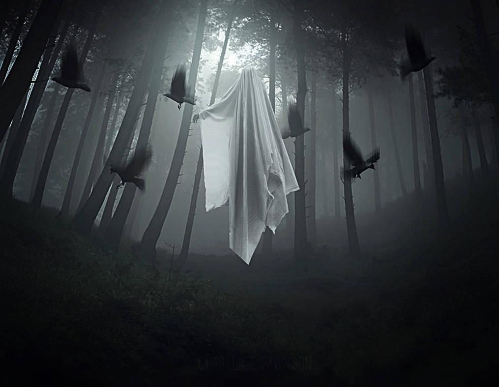 Phenomenon by CharllieeArts