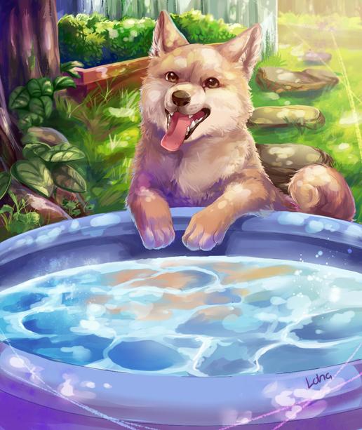 Doge Pool by lalaliluleloha