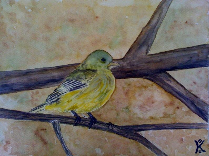 2010.04 - Bird on a tree by kostaskouk