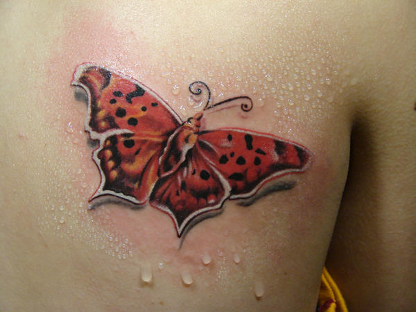 red butterfly... by scottytat2