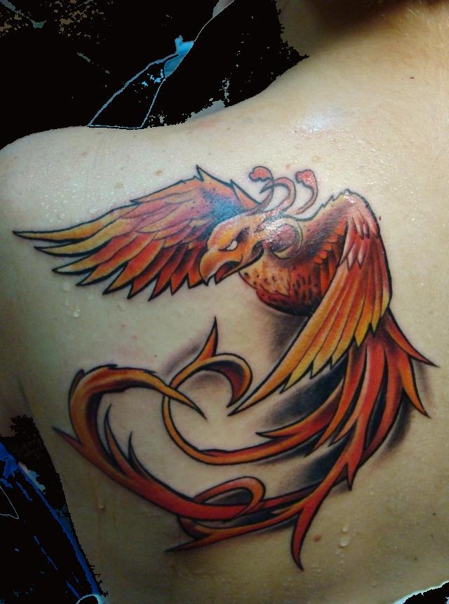 phoenix by scottytat2