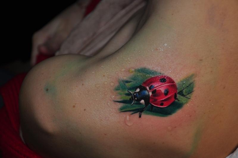 lady bug again