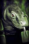Lizard Skin by AG-08