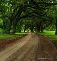 Southern Drive by TRBPhotographyLLC