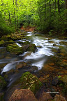 Confluence, mountain streams by TRBPhotographyLLC