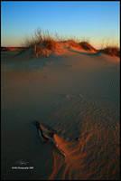 Warming Dunes by TRBPhotographyLLC