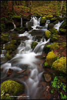 North Carolina Cascade GSMNP by TRBPhotographyLLC