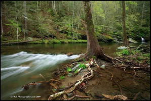 Mountain Water by TRBPhotographyLLC