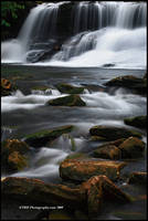 A Closer View by TRBPhotographyLLC