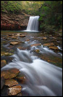 Spring At Little Stoney Falls by TRBPhotographyLLC