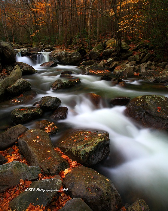 GSMNP Autumn 12 by TRBPhotographyLLC