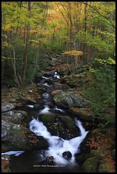 Autumn IV GSMNP 2010 by TRBPhotographyLLC