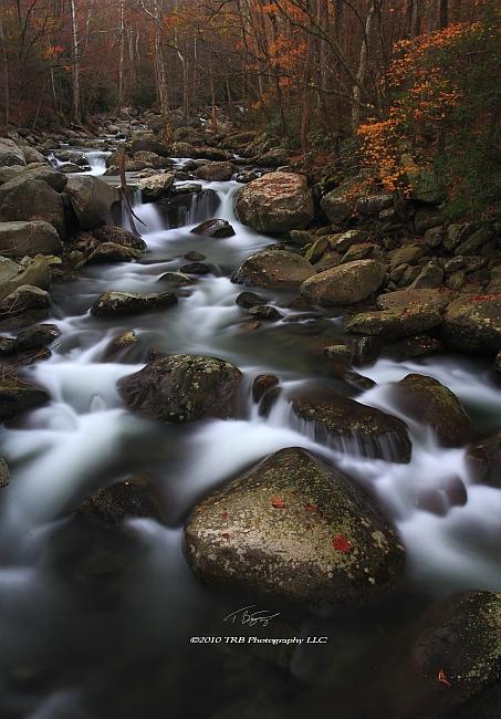 Autumn VII GSMNP 2010 by TRBPhotographyLLC