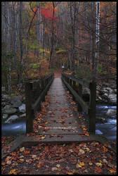 Autumn XI GSMNP 2010 by TRBPhotographyLLC