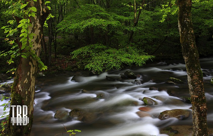 Spring Flow in the Mountains by TRBPhotographyLLC