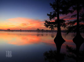Sunrise at Reelfoot Lake by TRBPhotographyLLC