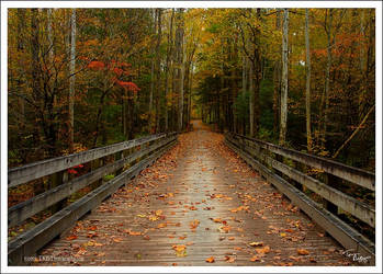 The Journey Begins by TRBPhotographyLLC