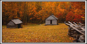 Cabin on Roaring Fork Fall 05