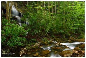 GReen GREen GREEn GREEN by TRBPhotographyLLC