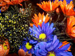 Halloween Flowers by KateMB19