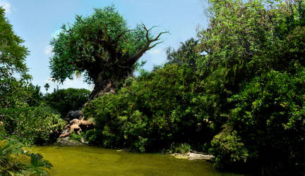 Life After Disney:Tree of Life by eledoremassis02