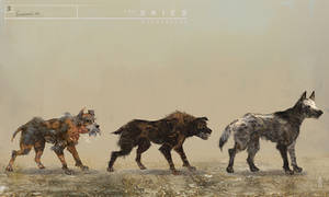 The Skies concept Rabid Dogs