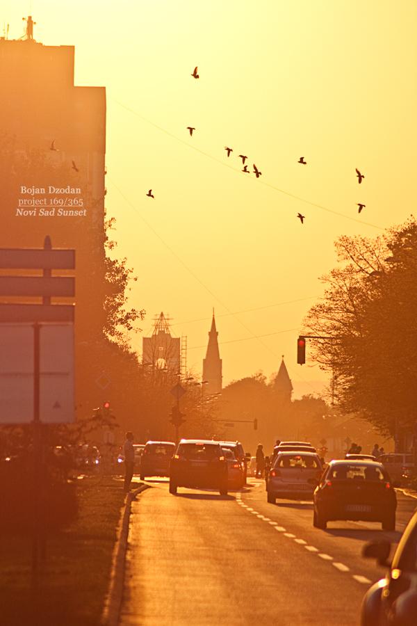 Novi Sad Sunset by Dzodan