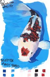 Koi Fish Study