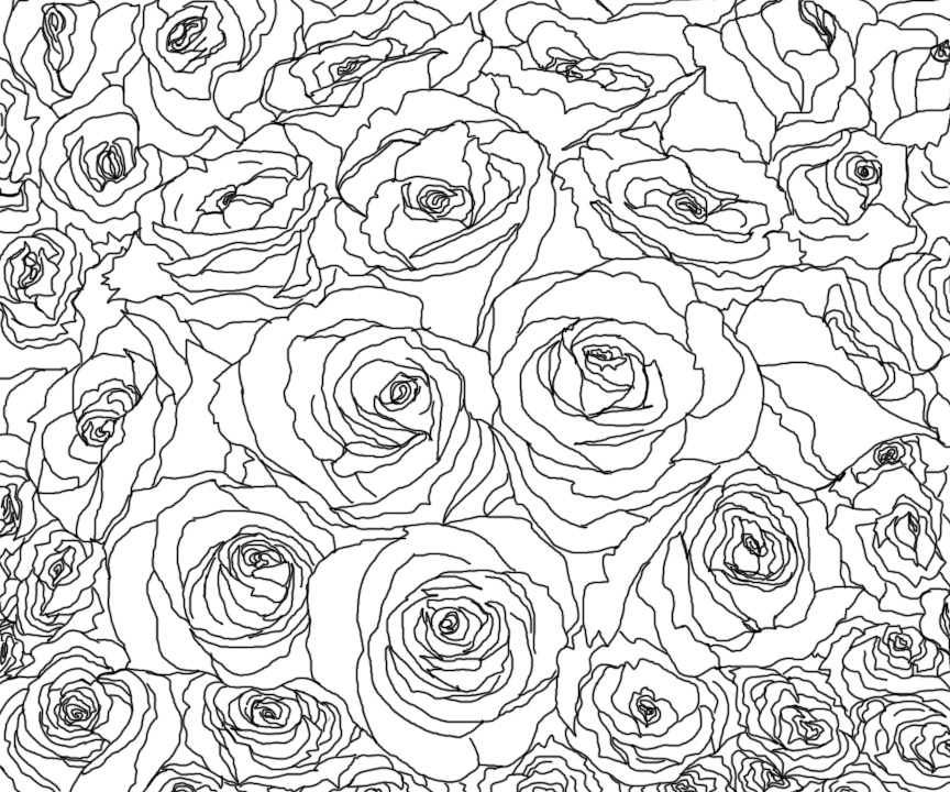Beautiful Flower Line Drawing : Roses line art by kallou on deviantart