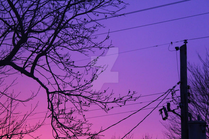 pink and purple sunset by mutatedcherries