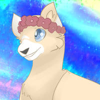 Cat's Icon by MirrorFlygon