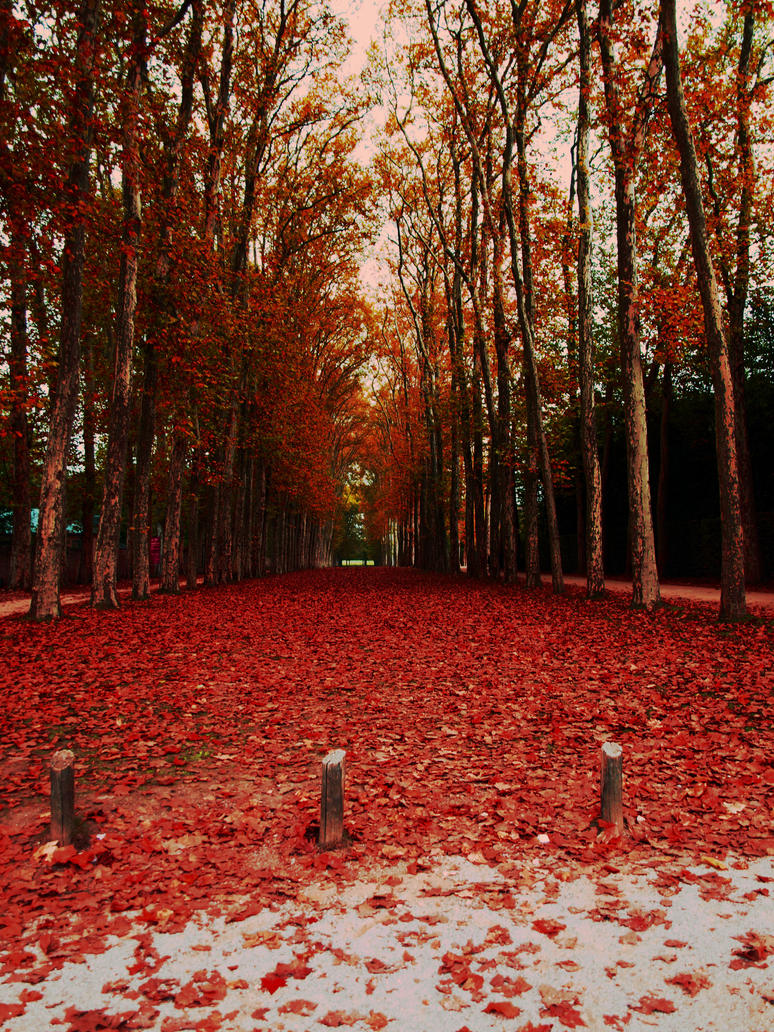 Fall in Paris by Juliemarie91
