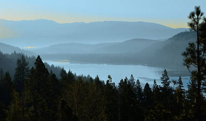 Donner in the Mist