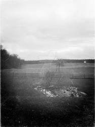 Fields of gray