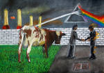 Pink Floyd 5 album covers in one pic!