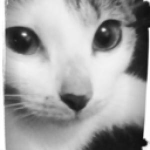 lianne29annika's Profile Picture