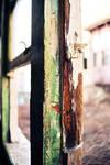 still endures.. by esracolak