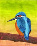 Kingfisher edit by MattDeakinFineArt