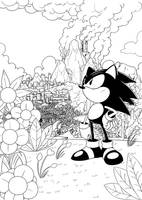 sonic on south island by sonicsama