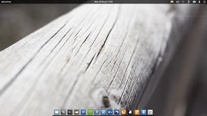 My elementaryOS (my dock icons)
