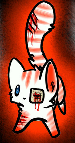 my new zobmie cat kakashi