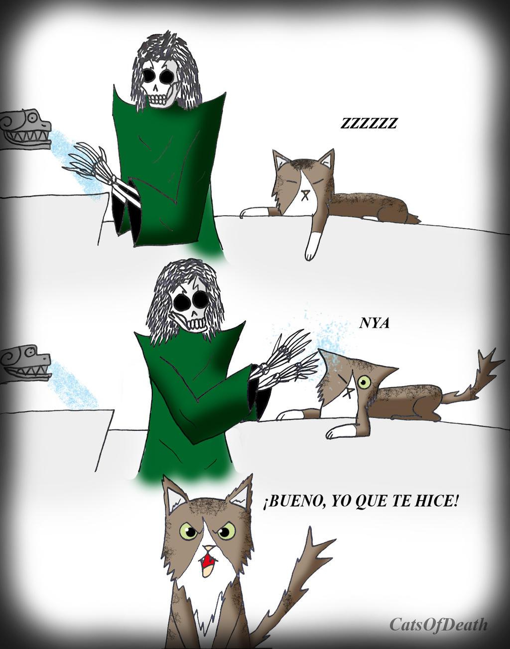 Gato trolleado by Catsofdeath