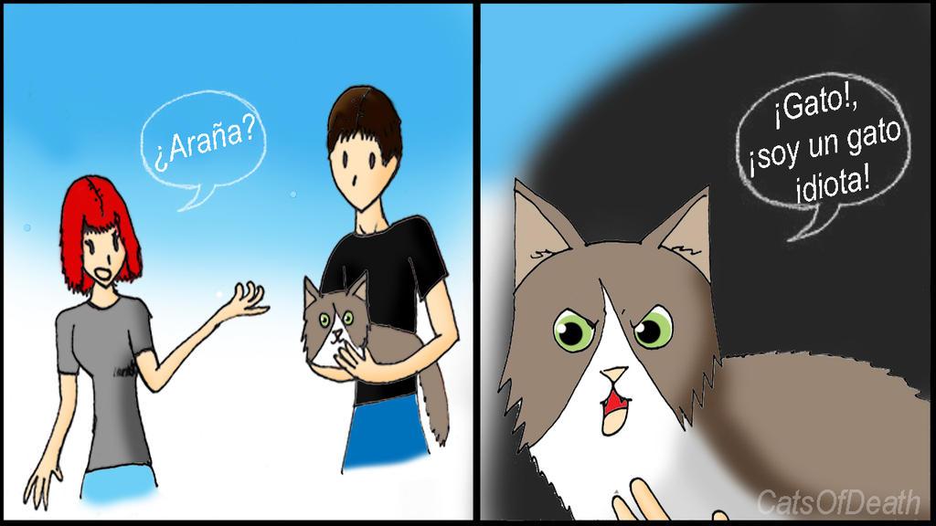 Chiste de gatos by Catsofdeath