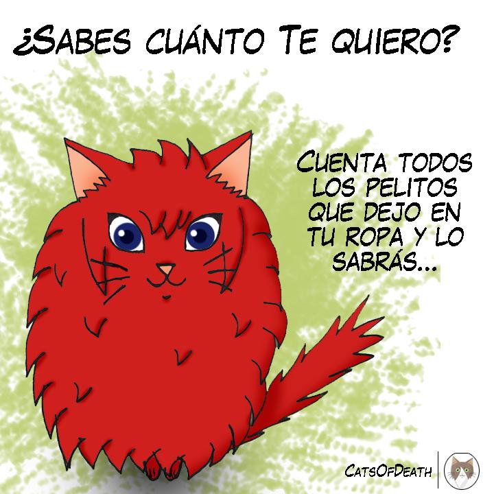 Amor gatuno by Catsofdeath