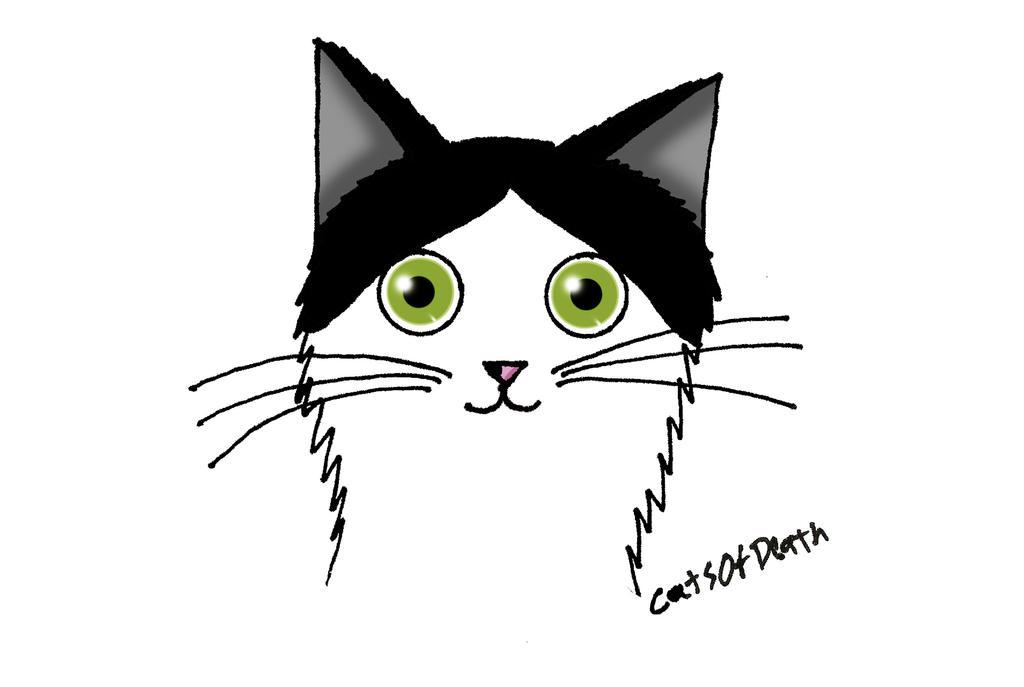 Gatito Blanco y Negro  by Catsofdeath