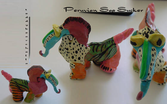 Peruvian Sap Sucker